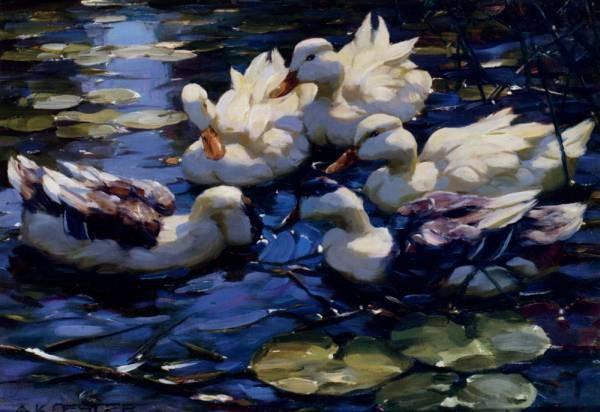 Koester Alexander Five Ducks In A Pond